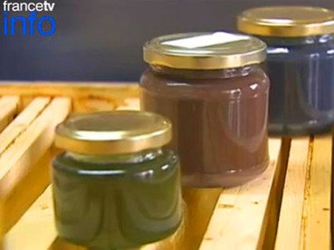 French bees making honey in M&M colors: image via infiniteunknown.net