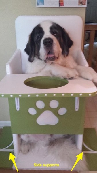 Bailey Chairs for dogs