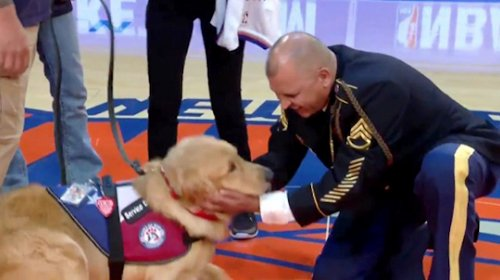 Murphy the Service Dog with Sgt. Yulfo