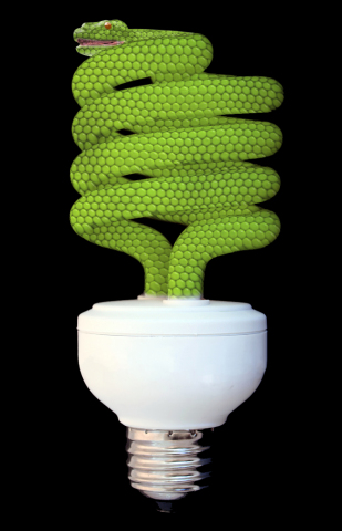 Green Energy by Ossowski: I think I will just light a candle. Snake art by Ossowski