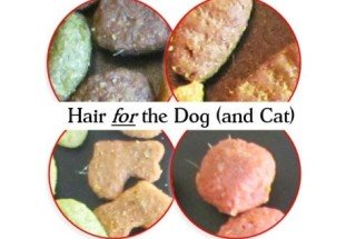 Hair For The Dog (And Cat): image via truthaboutdogfood.com