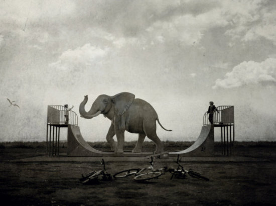 Happy Friends by Ossowski: Elephants are way more fun than bicycles! Surreal elephant art by Ossowski.