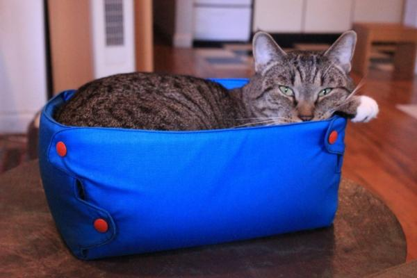 Whisker+Box bed for cats