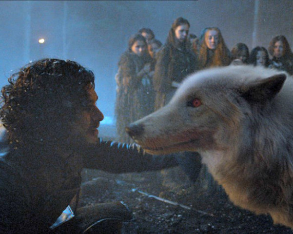 Jon Snow & his Dire Wolf Ghost: Could Jon end up being a warg like Bran Stark? (image via Facebook)