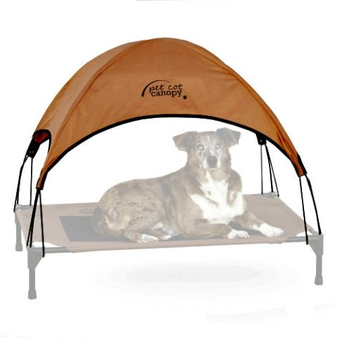 K&H Pet Cot Canopy: Providing pets with shade is important