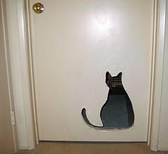 10 Truly Amazing Cat Doors And Entryways Petslady Com