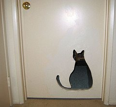 Laundry Room Cat Door: Image by Jane LaFazio