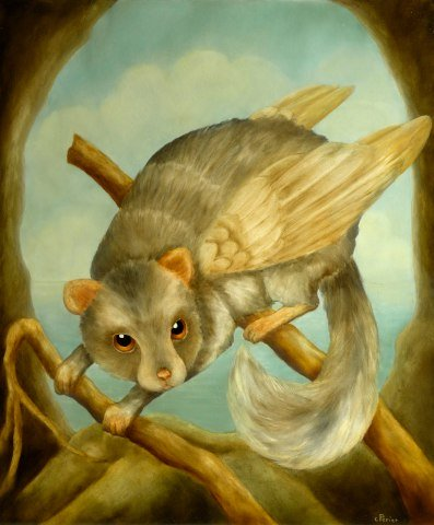 Le Voltigeur by Perier: Real Flying Squirrel Art by Perier