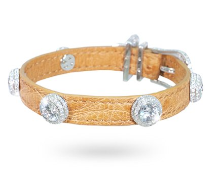 L'Etoile Diamond Dog Collar: © I Love Dogs Diamonds