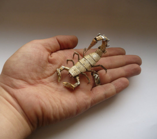 Scorpion by Gates: One of a kind piece of animal art by Gates.