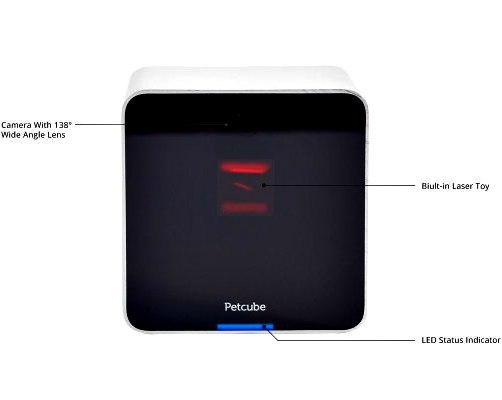 Petcube Wi-Fi Pet Camera Keeps You & Your Pet In Touch: What are your pets doing while you're away?
