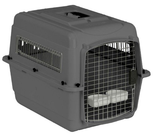 Petmate Cargo Crate: IATA approved pet carrier