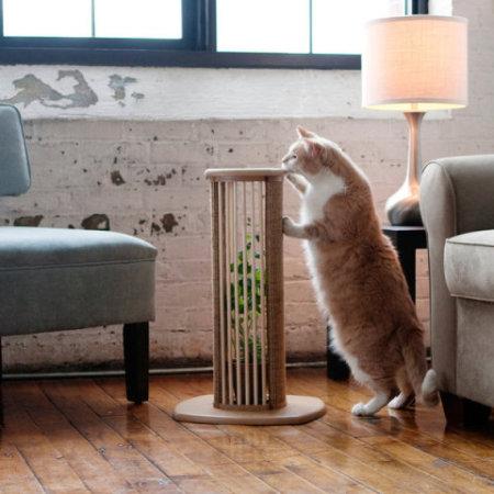 Scratch 'n Sniff Live Catnip Scratching Post: © Scratch 'n Sniff Live Catnip Scratching Post