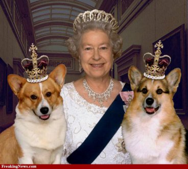 Queen Elizabeth & two of the Royal Corgis
