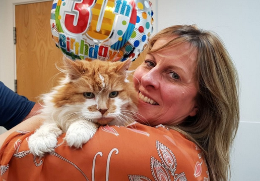 World's Oldest Cat Celebrates His 30th Birthday Party