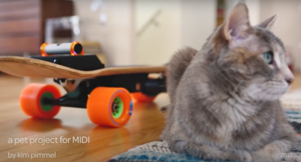 DIY Electric Skateboard For My Cat