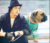 Rocky & Butkus