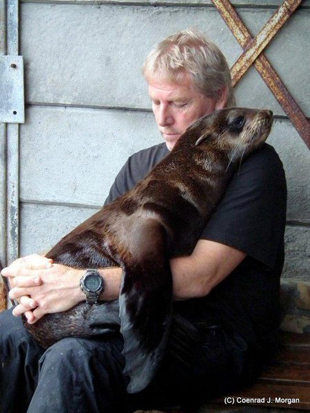 Sea Lion and Loving Friend