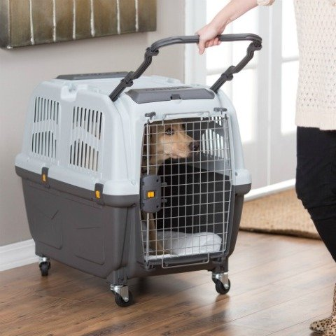 Skudo Plastic Sky Kennel by Midwest: IATA approved pet carrier