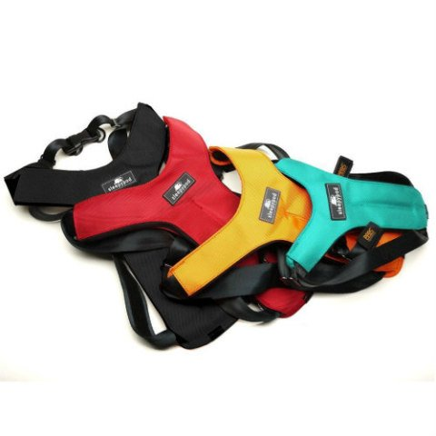 Sleepypod Pet Seat Belt Harness: 5 Star Rating from Center for Pet Safety