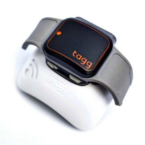 Tagg GPS Plus Pet Tracker & Docking Station: Pet tracking devices can bring pets home safely