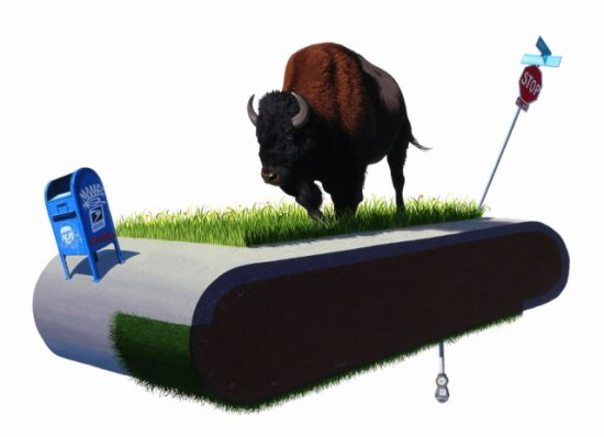 Treadmill II by Keyes: Yeah, I had a good Thanksgiving too buddy. Bison art by Keyes