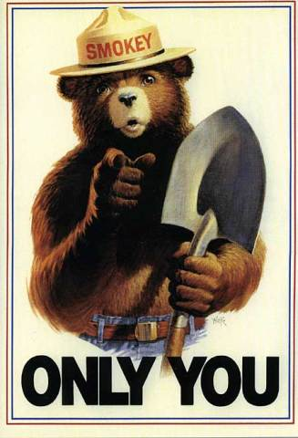 Smokey the Bear in an Uncle Sam/Lord Kitchner-Style Campaign