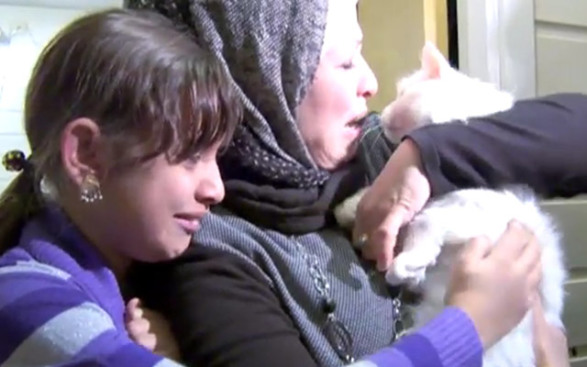 Kunkush the Refugee Cat Reunited