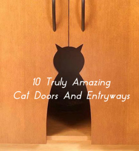 Need a great cat door but want something better than the standard flap? Here are 10 amazing and unique cat doors that you can buy or make yourself as a DIY ... & 10 Truly Amazing Cat Doors And Entryways | Petslady.com