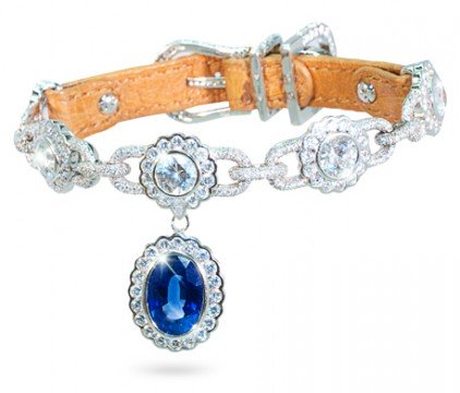 Amour de la Mer diamond dog collar: © I Love Dogs Diamonds