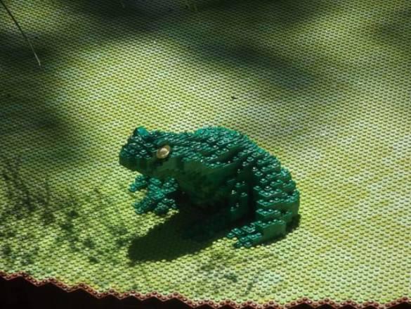 Lego Frog (Photo by Annie Bear)