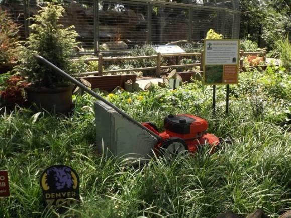 Lego Lawnmower (Photo by Annie Bear)