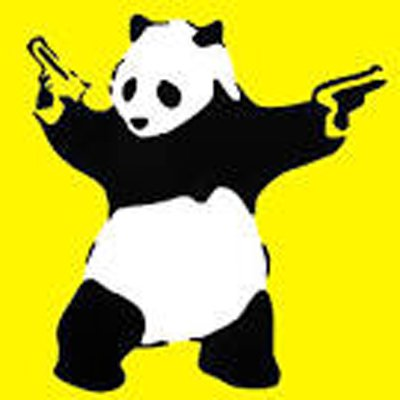 Armed Panda: Source: Funny-pictures.picphotos.net