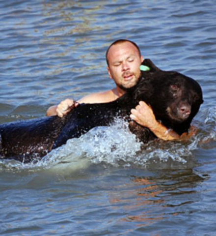 Black Bear Being Resued From Drowning (Image via Don't Poke The Bear)