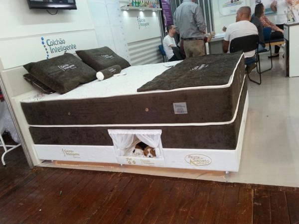 Pet Bed Inside Mattress