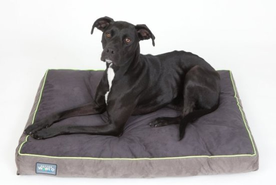 Better World Orthopedic Pet Bed