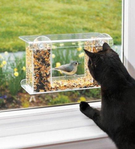 One-Way-Mirror Bird Feeder