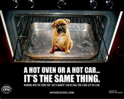 Hot car warning: Source: Blog.timesunion.com