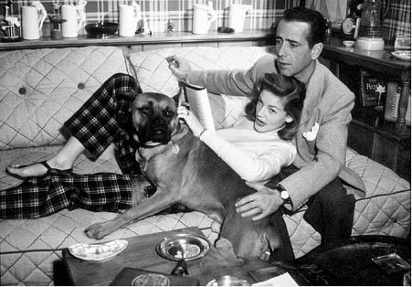 The Bogarts and Harvey: Source:Pets4ever.org