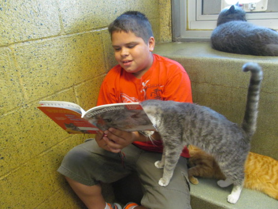 Book Buddy and furry friend (Photo via BCARLWebsite)