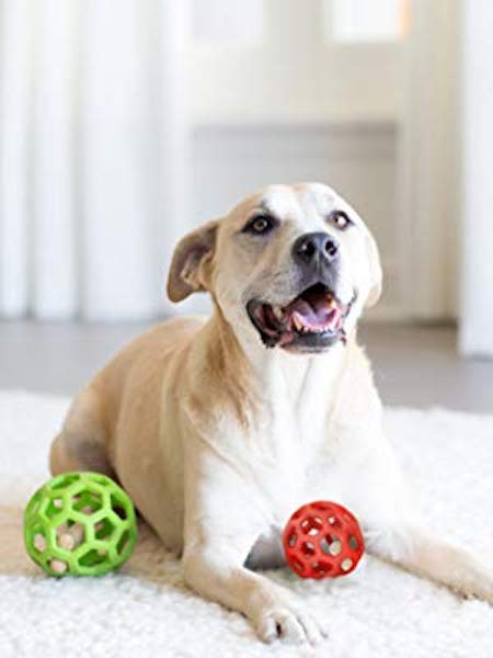 ​JW Hol-ee Roller Treat Dispensing Dog Ball