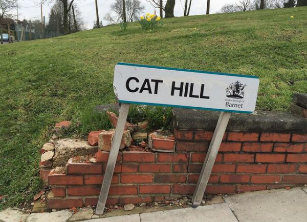 Real Places Named After Cats - Cat Hill, London