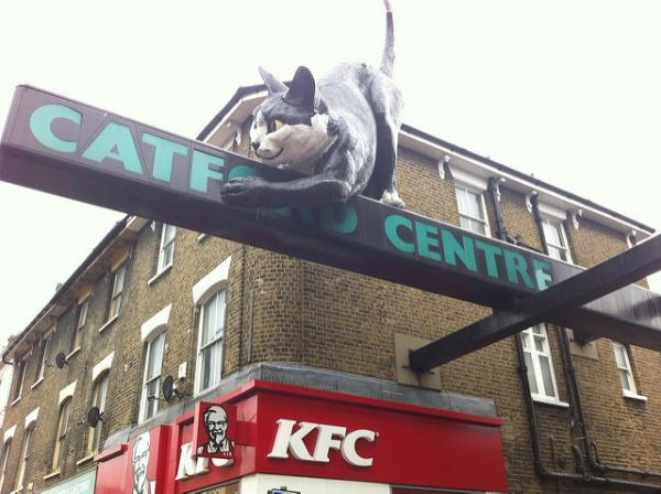 Real Places Named After Cats - Catford