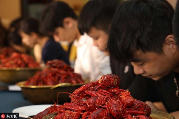 Wannabe Crayfish Tasters Compete Tooth & Claw For Big Bucks