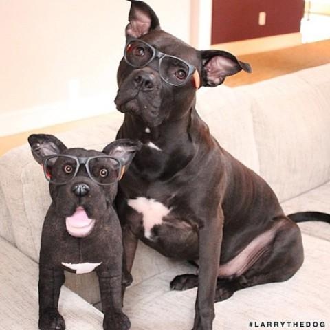 Cuddle Clones (Image via Earth Porm)