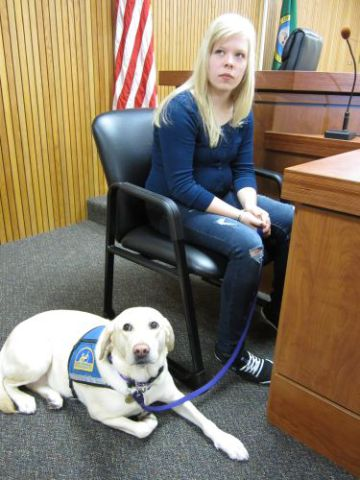Courthouse Dog Assisting a Witness (Photo by DrMongrol/Creative Commons via Wikimedia)