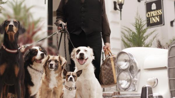 The 'Pet Friendliest Hotel' Award Should Go To Doris Day