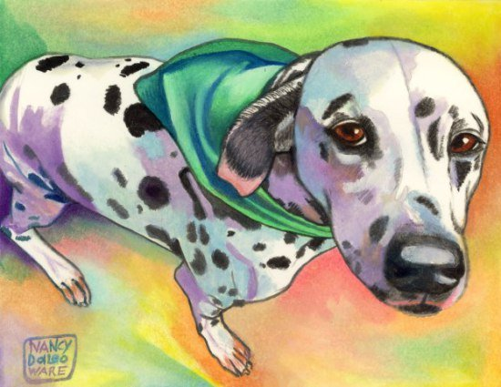 Dal Scarfed by Daleo: Even animal art with a black and white dog pops with color in Nancy Daleo's work.