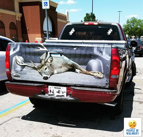 Oh Deer, It's A Texas Truck Tailgate Wrap