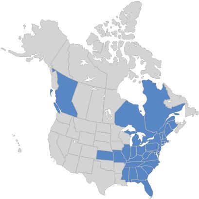 States affected by the Diamond Pet Food recalls as of May: image via foodsafetynews.com